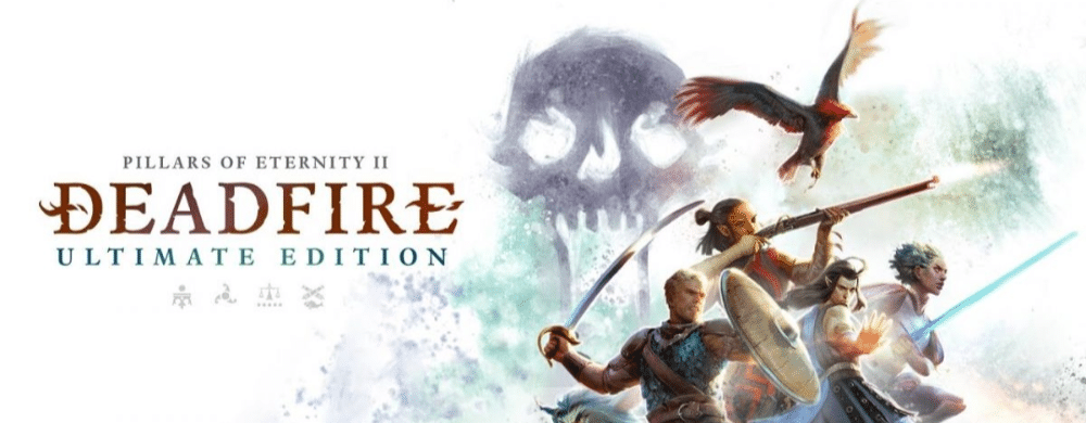 Pillars of Eternity 2: Deadfire toujours prévu sur Switch