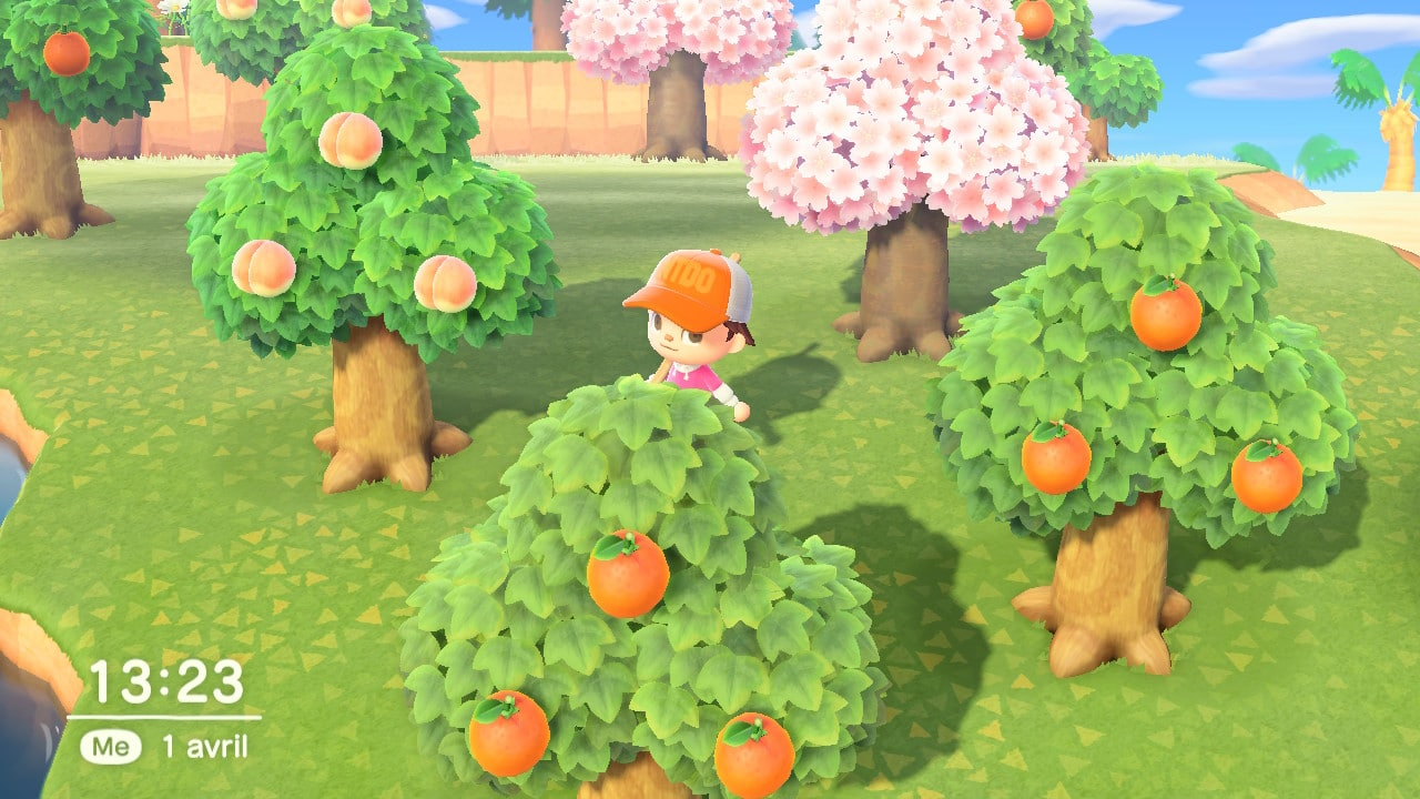 Animal Crossing fruits argent