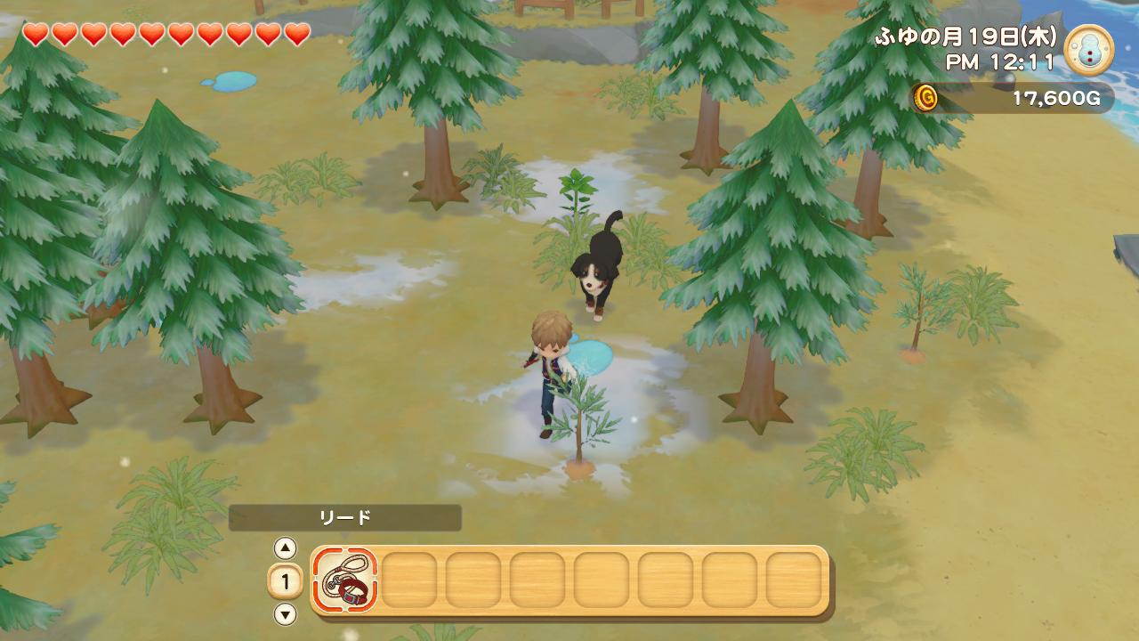 story of seasons pioneers of olive town détails 4