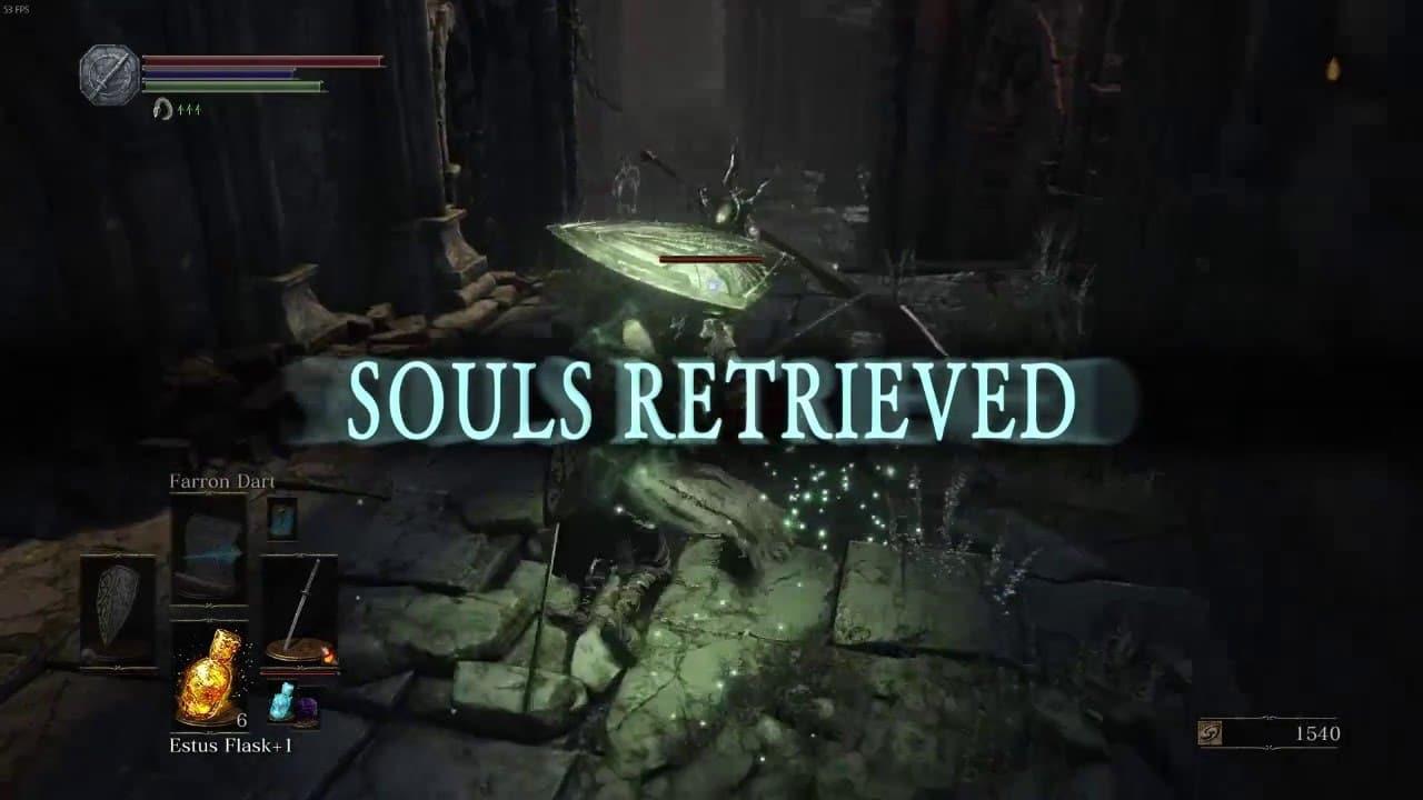 dark souls âmes récupérées